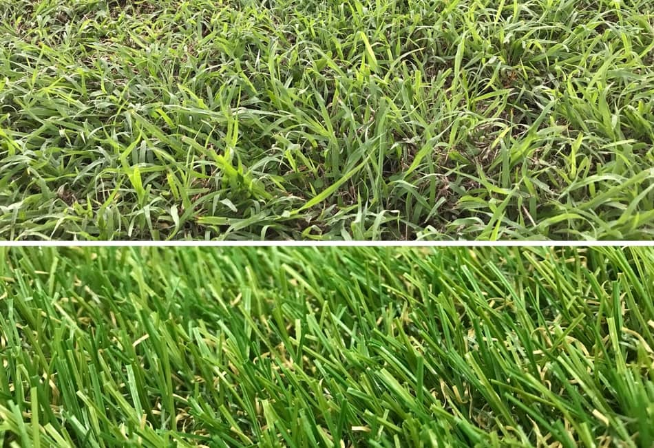 Astroturf vs grass
