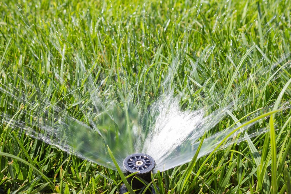 Lawn Sprinkler FAQ