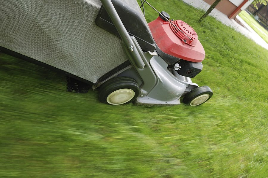 Can You Mow Too Often?