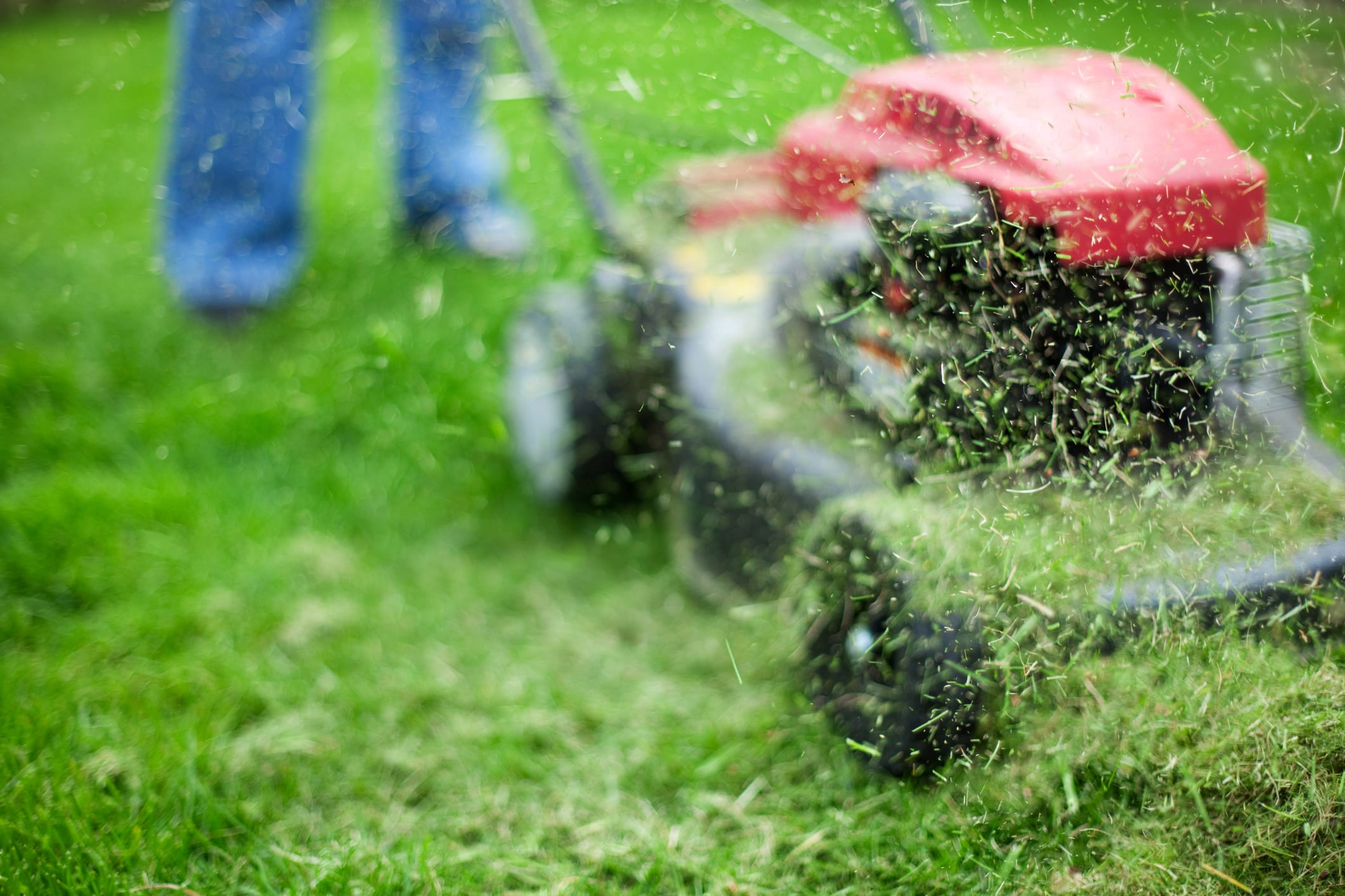 Lawn Mowing Strategies