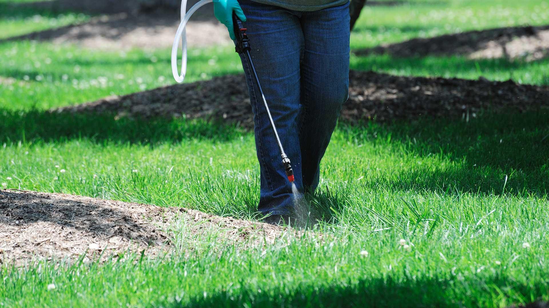 Using a Pre-Emergent Herbicide