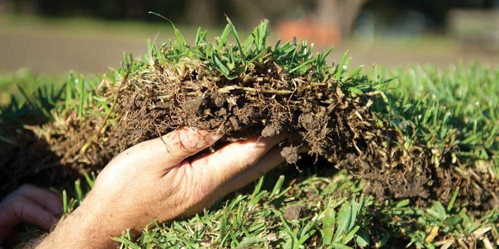 Soil Compactions