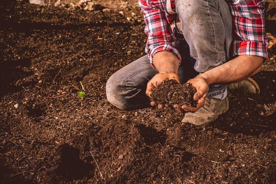 Soil Quality Checks