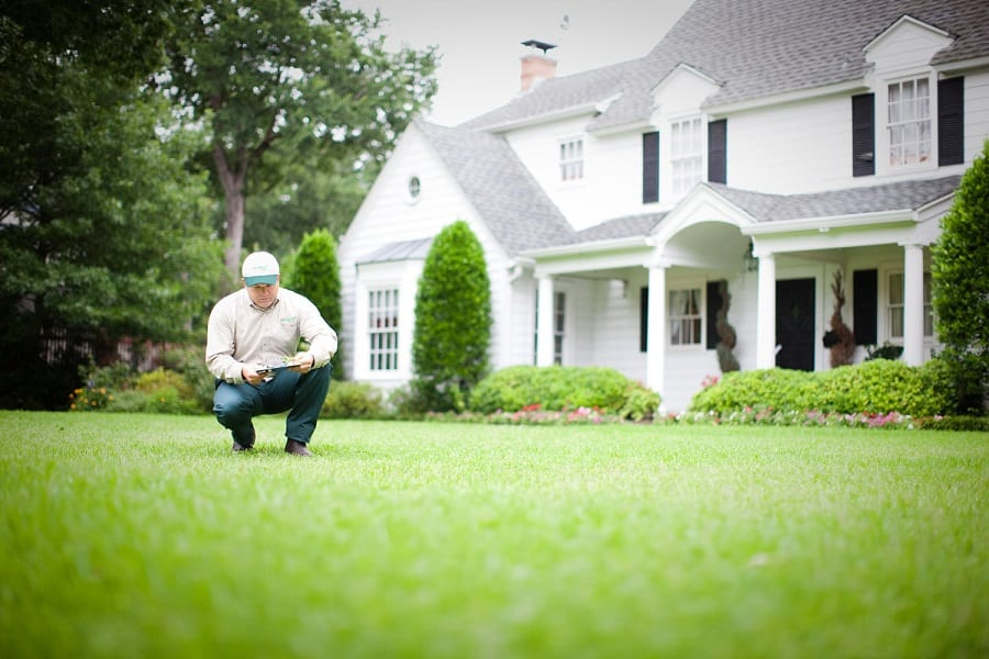 Ultimate Guide To Lawn Care