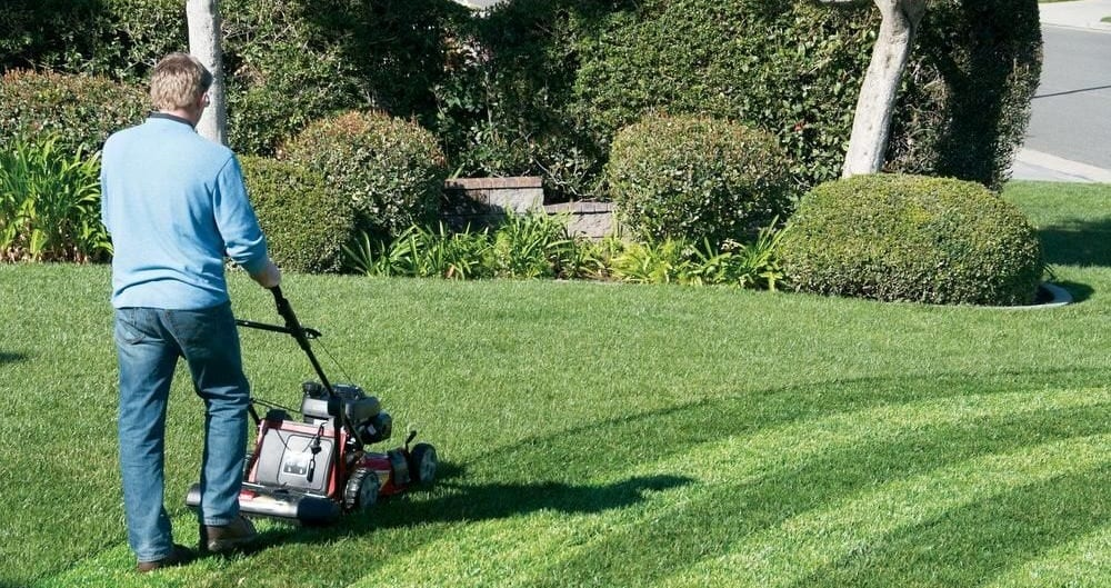 striping your lawn