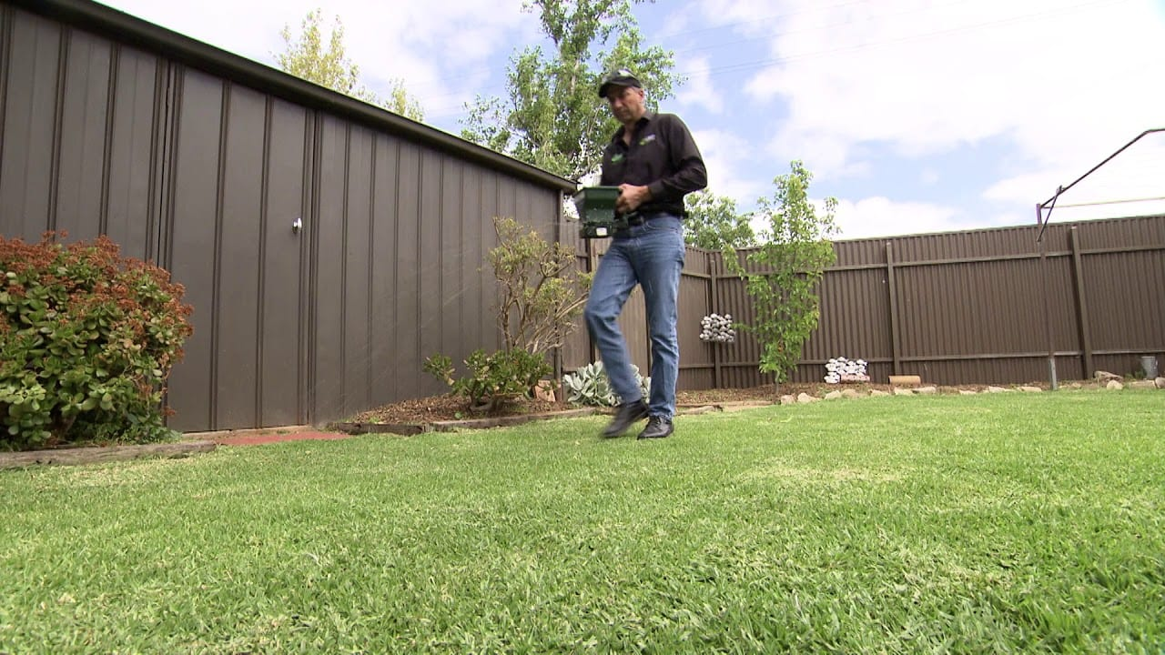 Adding Grass Seed To A Lawn
