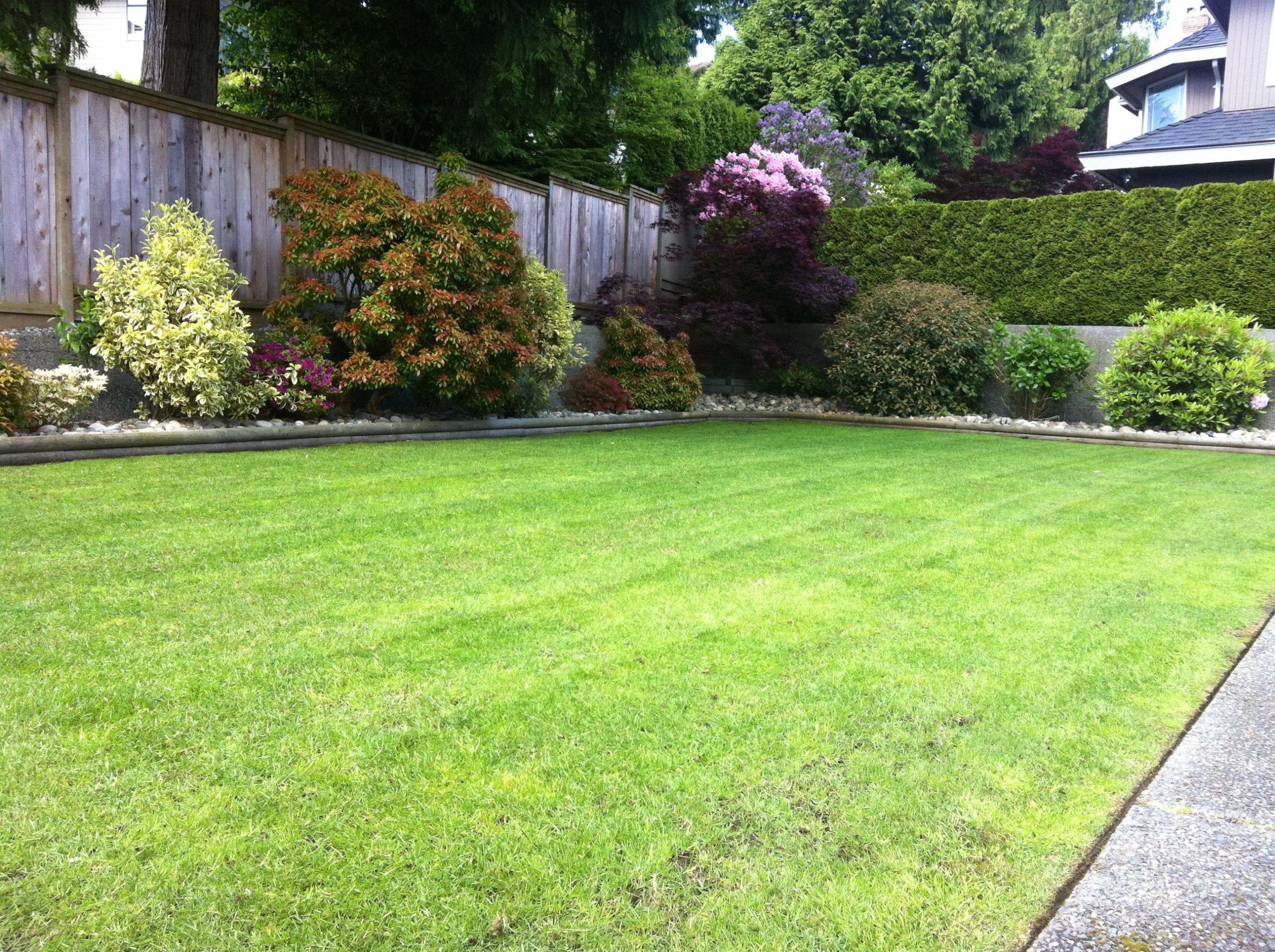 a thin lawn